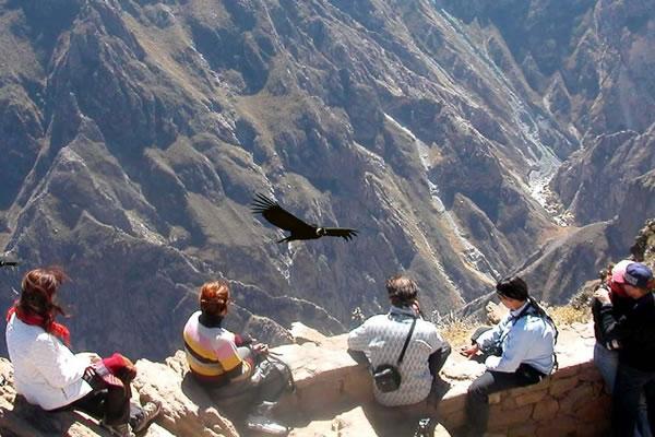 Tour Cusco Machu Picchu Titicaca Colca: 8Días
